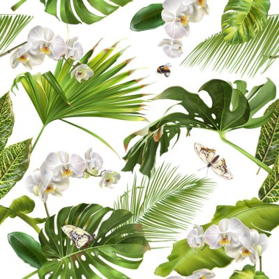 Tapeta Tropical orchid white pattern