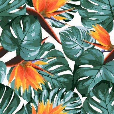 Tapeta Tropikalna zieleń filodendron monstera dżungla lasy deszczowe drzewa liście. Jasny pomarańczowy strelitzia ptak rajskich kwiatów. Egzotyczne wzór białe tło. Ilustracji wektorowych projektowania.