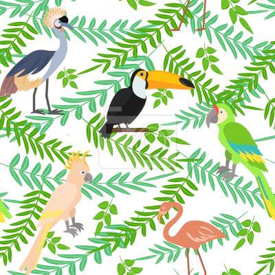 Tapeta Tropikalne Ptaki