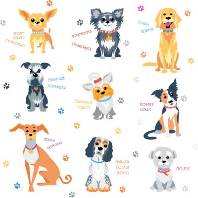 Tapeta Vector set kolor psy różnych ras