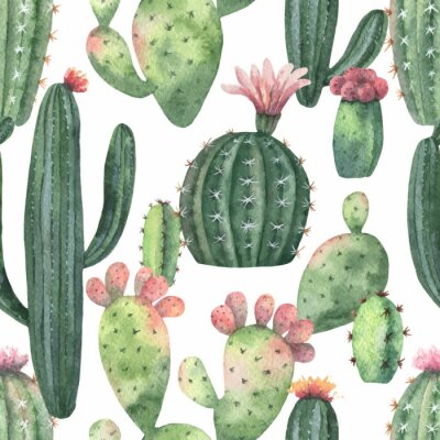 Tapeta Watercolor vector seamless pattern of cacti and succulent plants isolated on white background.